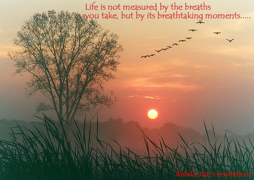 Life is not measured by the breaths you take - Quotes and Thoughts