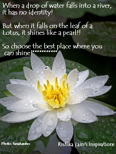 Choose the Best Place where you can shine.....