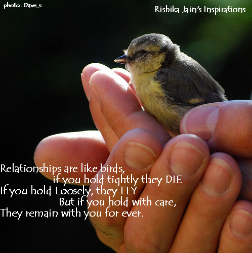 quotes about change in relationships. Relationships are like birds…