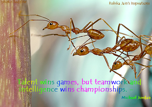 inspirational teamwork quotes. Success- Inspirational Quotes