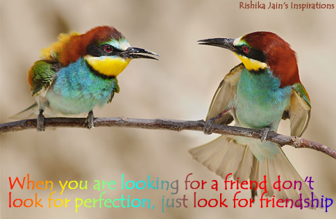 Friendship Quotes - Don't look for perfection, just look for friends - Inspirational Pictures and Motivational Quotes