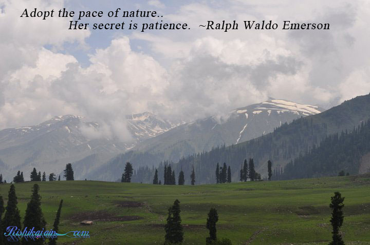 adopt the pace of nature ralph waldo emerson quotes
