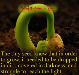 Life / Learning Quotes – Inspirational Quotes, Pictures and Motivational Thoughts