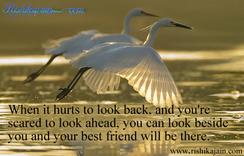 Friendship - Inspirational Picture and Motivational Quote.