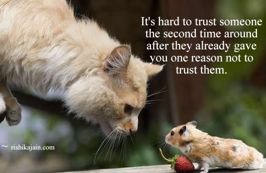 cat,mouse,Trust / Truth Quotes – Inspirational Pictures, Motivational Thoughts and Pictures