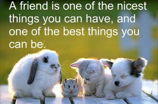 Friendship Quotes- Inspirational Quotes, Motivational Thoughts and Pictures.