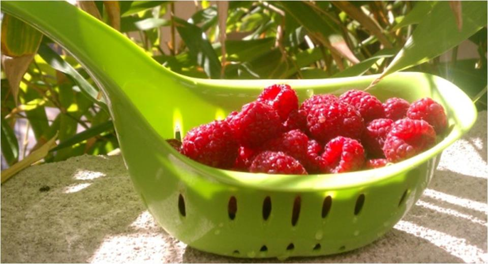 Health benefits of Raspberries