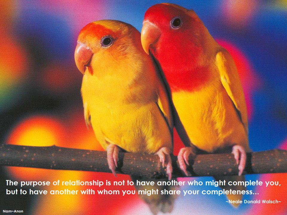 relationship,love,companion,purpose,inspirational quote, meaningful message, pictures