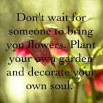 Beautiful Thought for the Day, Quotes,Pictures,Motivational, Inspirational,Decorate your own Soul