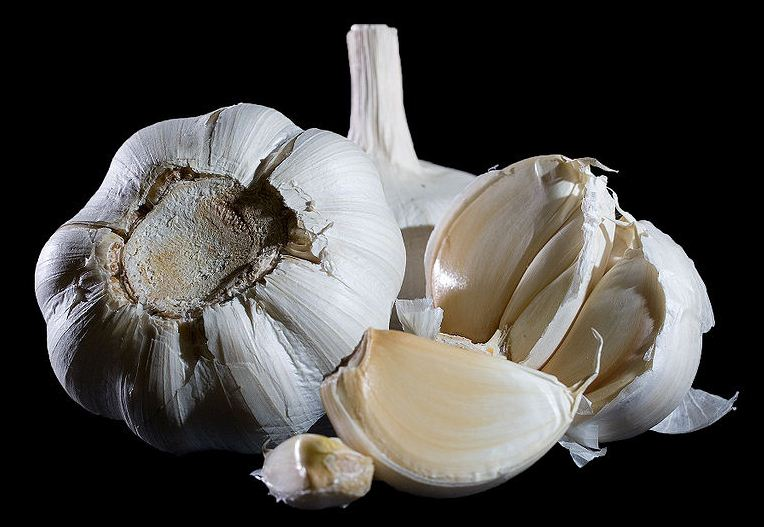 health advice,garlic,Health Inspirations,Tips,Inspirational Quotes, Pictures and Motivational Thought