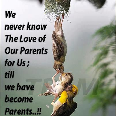 Love of parents, Good morning quotes, wishes, Inspirational Pictures,motivational thoughts, Quotes