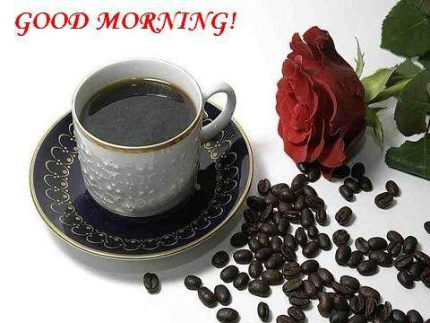 friends,Good morning ,Inspirational Quotes, Motivational Pictures and Wonderful Thoughts. wishes,sms, facebook,