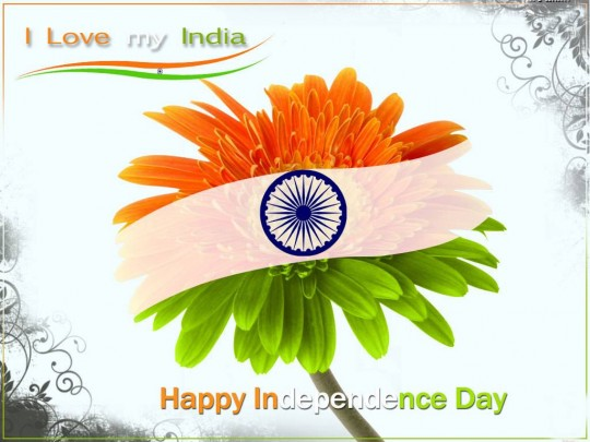 Independence Day Inspirational Quotes Pictures Motivational