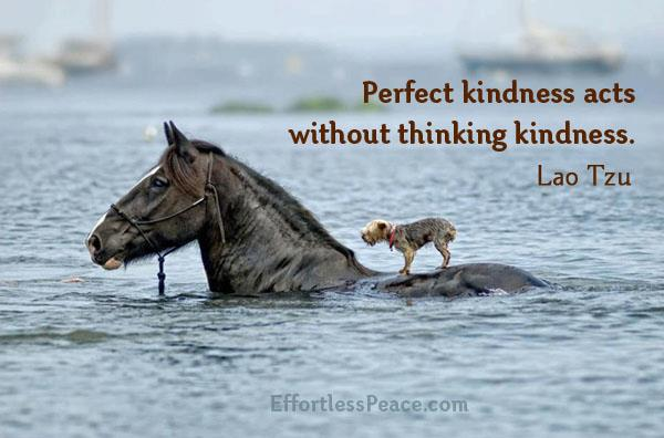 Kindness,Lao Tzu,Inspirational Quotes, Pictures and Motivational Thought