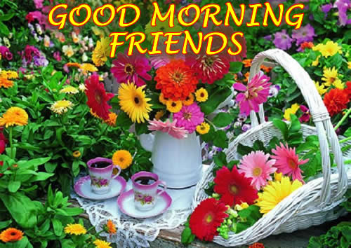 Good Morning Beautiful Family : Good morning to all my friends and family