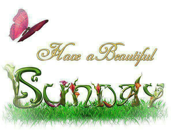Wishing You All A Happy Sunday