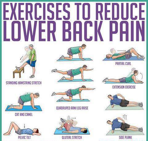 Search Results For Exercises For Lower Back Calendar 2015