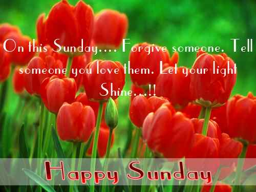 Sunday Quotes, Wishes, Beautiful Day Pictures, Flowers, Weekend Quotes, Relaxing Quotes