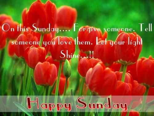 Spring beautiful enjoy sunday  u0645 u062A u062D u0631 u0643