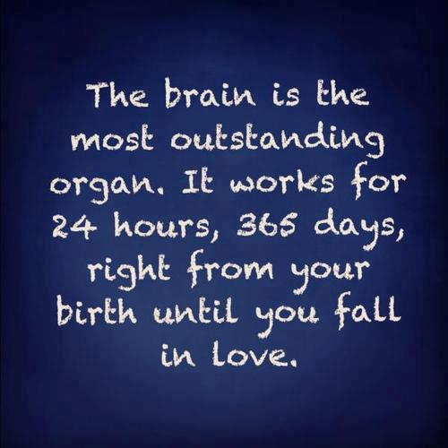 A Funny Love Quote : ... for 24 hours,365 days,right from your birth until you fall in love