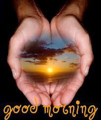 good morning wishes,quotes,sms,thoughts,picture