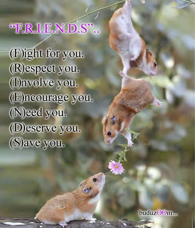 Friend & Friendship - Inspirational Picture and Motivational Quote.