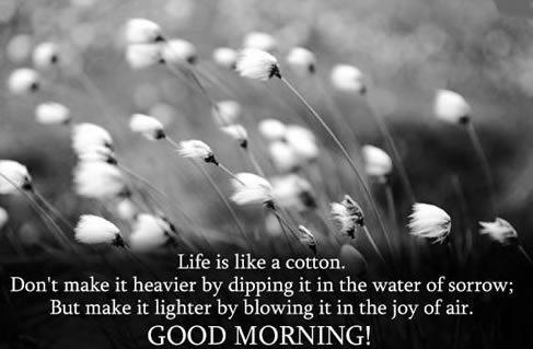 good morning quote inspirational quotes pictures