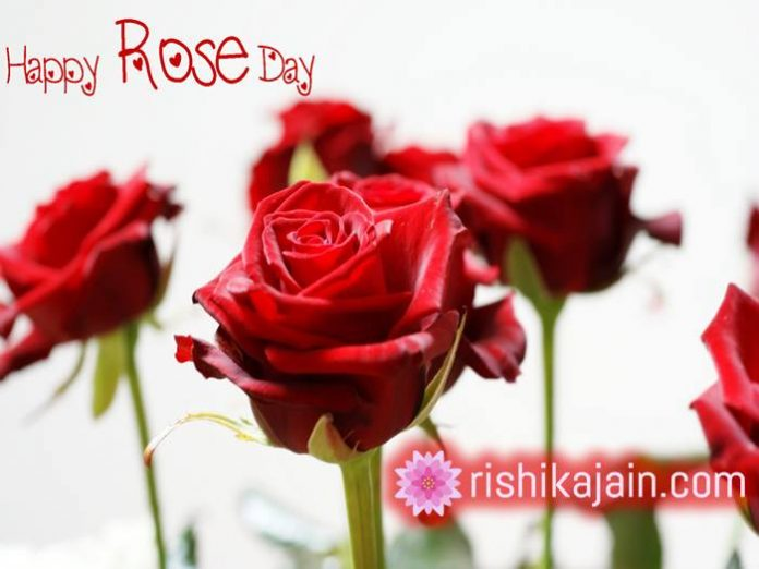 Rose day messages,Quotes,Images 1