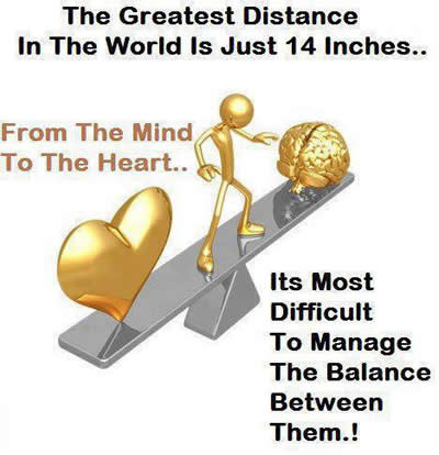Mind to the heart