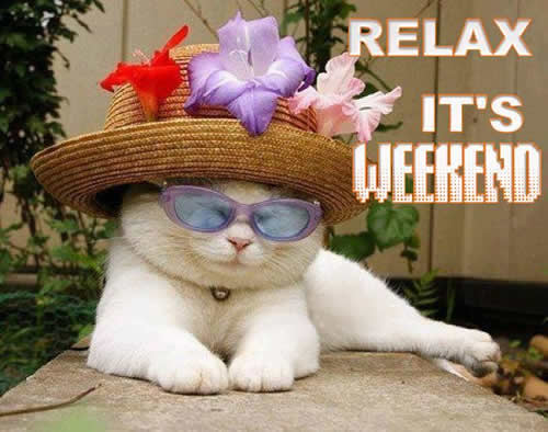 Image result for have a wonderful weekend
