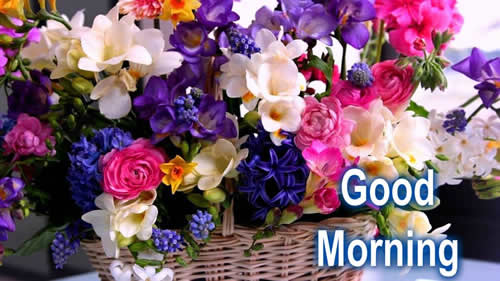Good morning ~ Inspirational Quotes, Motivational Pictures and Wonderful Thoughts