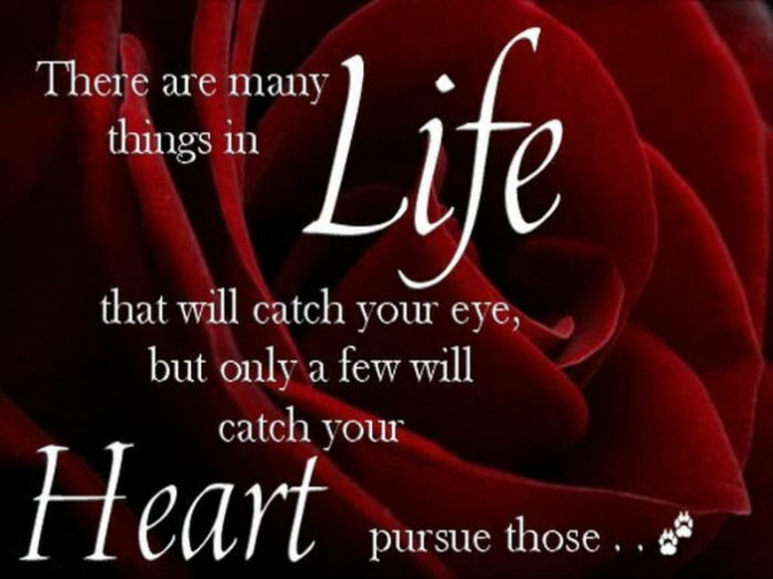 love,Heart Quotes ,Inspirational Quotes, Pictures and Motivational Thoughts.