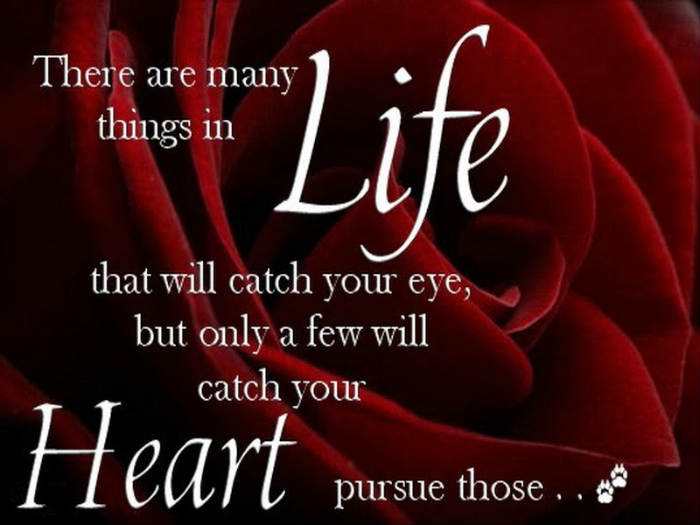 LoveHeart Quotes Inspirational Quotes Pictures Motivational Best Heart Touching Inspiring Quotes About Life
