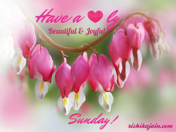 Sunday Quotes, Wishes, Messages , Weekend Lovely Quotes & Pictures