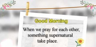 Good morning status,messages, Inspirational Quotes, Motivational Pictures and Wonderful Thoughts.