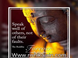 whatsapp status,messages,quotes,buddha quotes