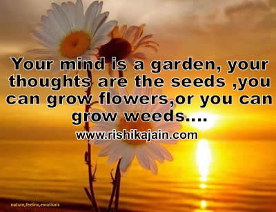 Daily Inspirational Thoughts Enchanting Good Morning Quotes And Wishes  Inspirational Quotes  Pictures