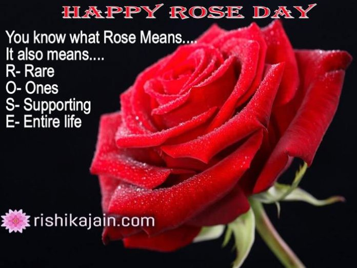 Happy Rose Day whatsapp status,messages,quotes,