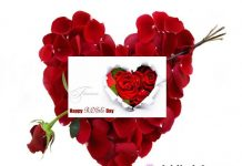 Best Rose day ,valentines day,messages,quotes,images,whatsapp status, greetings