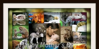 MOTHER'S DAY!!! INSPIRATIONAL QUOTES, MOTIVATIONAL THOUGHTS AND PICTURES