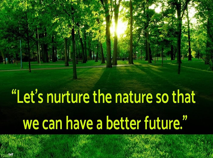 inspirational world environment day slogans quotes messages