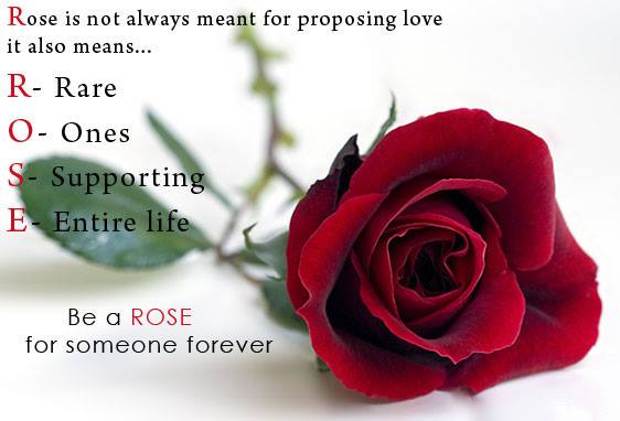 Best Rose day ,valentines day,messages,quotes,images,status, greetings