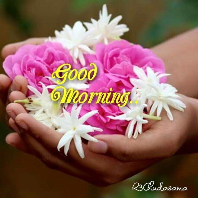 positive thinking,Good morning ,Inspirational Quotes, Motivational Pictures and Wonderful Thoughts.